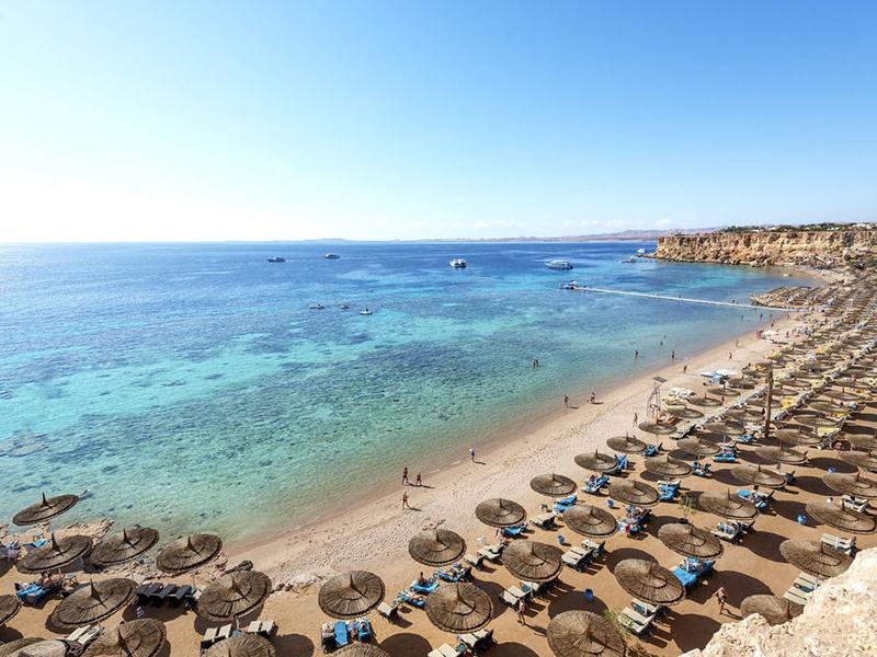 Reef Oasis Beach Resort-1