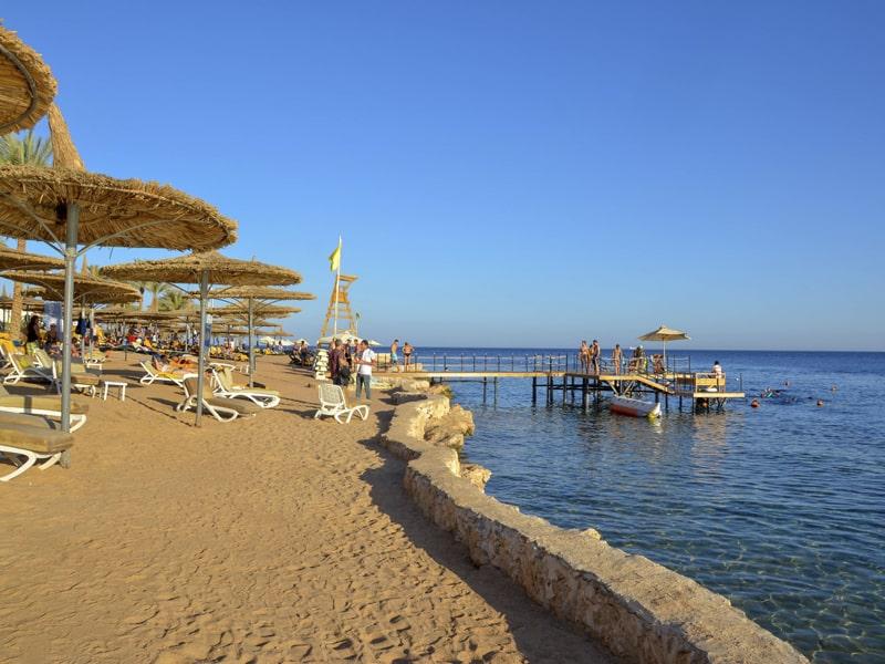 Reef Oasis Blue Bay (11)